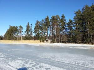web utsikt från isen